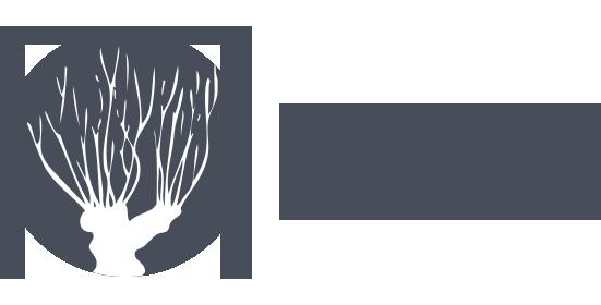 Osiedle Nowe Olendry